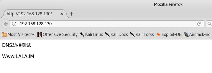 内网DNS劫持简单方法