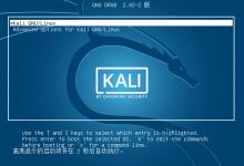 新手教程:全方位无死角使用VMware安装Kali Linux-荒岛