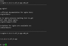 DoraCMS配置Nginx反向代理-荒岛