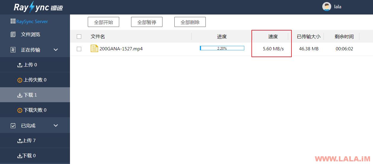 镭速大文件传输软件试用和安装方法