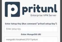 Pritunl:企业OpenVPN控制面板-荒岛