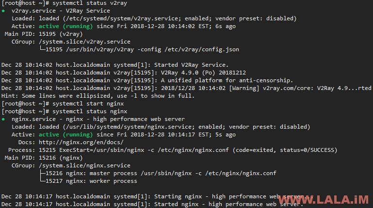 V2Ray+WebSocket+TLS+Nginx-荒岛