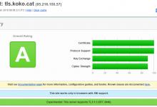 使用Caddy搭建TLS1.3+HTTP2代理-荒岛