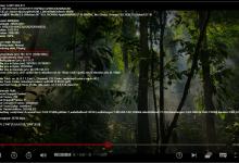 看Netflix的两种方法-荒岛