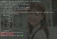 SSH那点事:公钥验证/两步验证/Fail2ban-荒岛