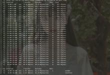 ikoula 9.9欧独服网卡带宽不稳定解决方法-荒岛