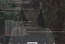 为APT安装的Nginx动态添加PageSpeed/Brotli模块-荒岛