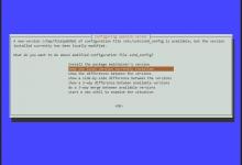 Debian10升级软件包的正确步骤-荒岛