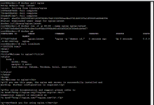Proxmox的LXC容器内运行Docker-荒岛