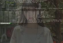 Debian10搭建Tor中继节点,以及多个实例共存-荒岛