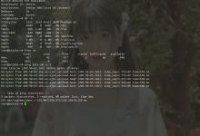 腾讯云轻量在没有VNC的情况下重装Debian10-荒岛