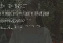 无需VNC网络重装CentOS7-荒岛