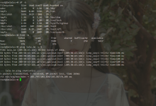 甲骨文OracleLinux8手动重装系统为Debian10-荒岛