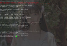 甲骨文OracleLinux8扩容引导卷-荒岛