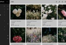 PhotoPrism:功能强大的开源照片管理程序-荒岛